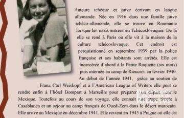 Panneau 5a du camp de Rieucros